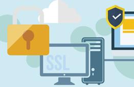 SSL Web Security System